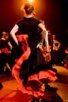 activite flamenco