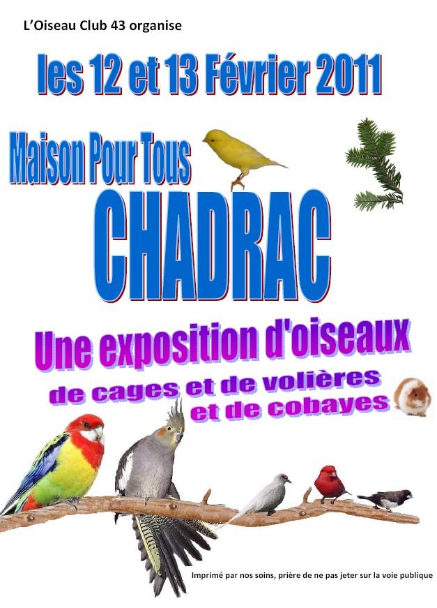L'association Oiseaux club expose !